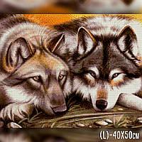 Алмазная вышивка Волк с Волчицей (TWD20014) The Wortex Diamonds