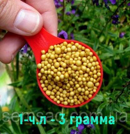 Osmocote PRO 5-6М (Формула 19-9-10+2MgO+TE) Декоративные лиственные \ Хвойные кустарники 100г, фото 2