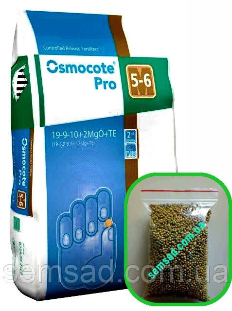Osmocote PRO 5-6М (Формула 19-9-10+2MgO+TE) Декоративные лиственные \ Хвойные кустарники 100г