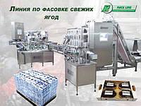 Автоматическая линия для фасовки упаковки свежих ягод