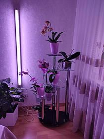 """Подставка для цветов """"Мадрид"""" прозрачный+покраска 65х40х110 (Бц-стол ТМ)"""