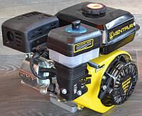 Двигатель бензиновый Кентавр ДВЗ 200 Б 6,5 л.с. вал 20 мм шлиц., фото 1