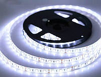 Светодиодная  LED лента  SMD 5050 60Led /м 14.4W/м  белый  холодный 12V  IP20 5м, фото 3
