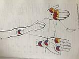 Книга Биоптрон цветотерапия Цептер по точкам лечение и снятие боли, фото 4