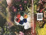 Книга Биоптрон цветотерапия Цептер по точкам лечение и снятие боли, фото 2