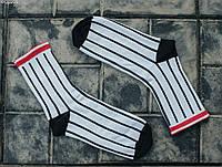 Носки Staff lines