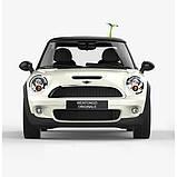 3D наклейка на авто Саженец, фото 4
