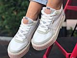 Puma женские демисезонные белые с бежевым кроссовки на шнурках, фото 4