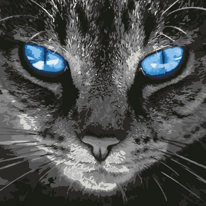 """Картина по номерам """"Пронзительный взгляд"""" ★★★★★ Идейка (КНО4177)"""