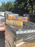 """Плитка для цоколя паркану """"Скеля"""" 250х105х20мм, фото 5"""