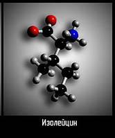 Изолейцин (L)