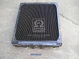 Радиатор вод.охлажд. (642290-1301010-011) МАЗ-642290 (3 рядн.)(технология КупроБрейз)(пр-во ШААЗ), фото 2