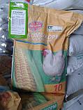 Комбікорм для курчат курей зростання ПанКурчак 3-1 (з 8 тижня), фото 3