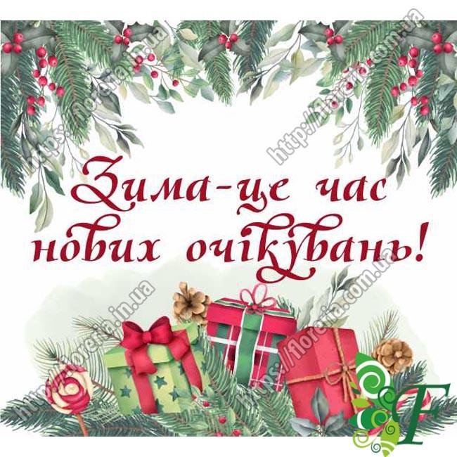 Бирка открытка 5х4,5см НГ Зима - это...  за 100 шт