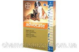 Адвокат для собак 25-40 кг №3 упаковка