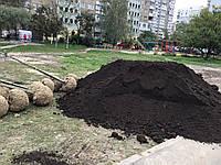 Чернозем плодородный,Торфяной чернозем под газон