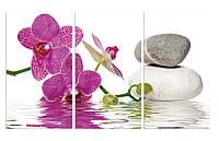 "Картина на стекле ""Орхидея в воде"""