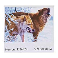 Алмазная мозаика JIA TU TOY C 43589 / JS 24579 20 х 30 см