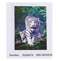 Алмазная мозаика JIA TU TOY C 43863 / JS 24675 20 х 30 см