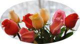 розы для покупательниц