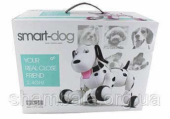 Інтерактивна собака на управлінні Smart-dog (066998)