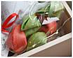 """Подарочный набор """"Сундук со сладостями"""", фото 3"""