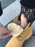 Зимние женские ботинки Timberland НА МЕХУ (Распродажа), фото 3