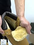 Зимние женские ботинки Timberland НА МЕХУ (Распродажа), фото 6