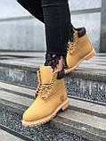 Зимние женские ботинки Timberland НА МЕХУ (Распродажа), фото 2