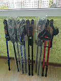 Треккинговые палки NORD STICKS синие телескопические, фото 4