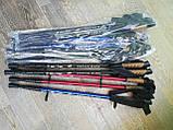 Треккинговые палки NORD STICKS синие телескопические, фото 5
