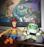 """Ковбой Вуді, герой з Діснеївського мультфільму """"Історія іграшок"""", фото 4"""