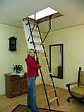 Чердачная лестница OMAN MINI TERMO, фото 4