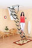Чердачная лестница FLEX TERMO OMAN (деревянный короб), фото 2