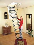 Чердачная лестница FLEX TERMO OMAN (деревянный короб), фото 4