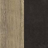 """Современная стенка в зал """"Орлеанс"""" (Мебель сервис), фото 2"""