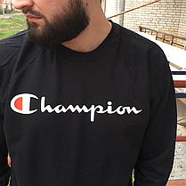 Champion свитшот • Фотки живые • Свитшот мужской с бирками, фото 2