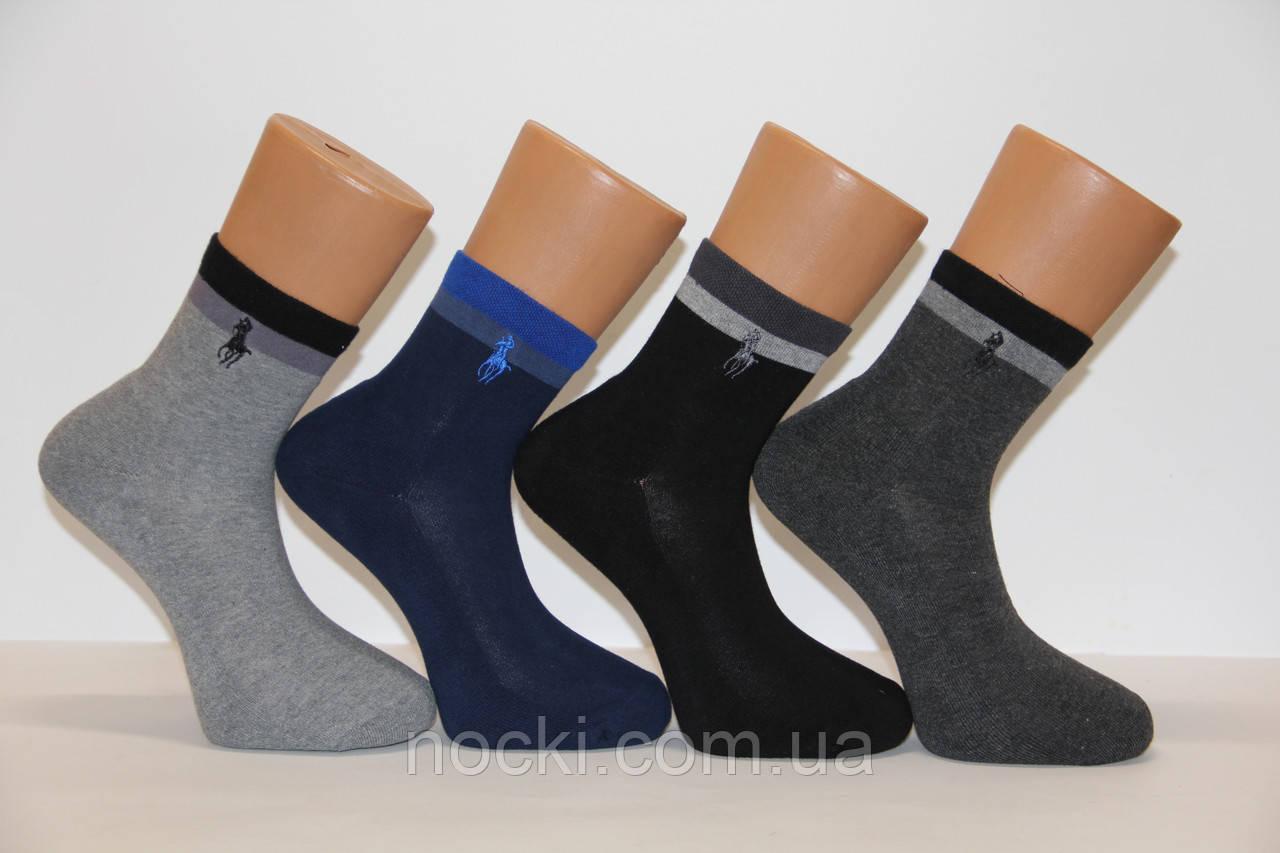 Мужские носки средние с махровой подошвой PIER LONE 41-44  E-194 гладкие