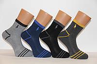Мужские носки средние с махровой подошвой PIER LONE 41-44  L-33 теннис