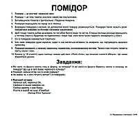 Картки Домана Овочі з фактами 20 карток Ламінація на українській мові, фото 4