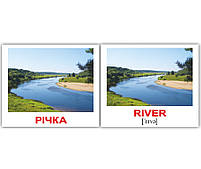 Картки Домана Природа/Nature 40 міні-карток укр-англ, фото 3