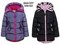 Куртки для девочек оптом, Glo-Story, размеры 134-164, арт. Gma-1377, фото 1