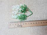 Добавка туя зелено-белая 9см, фото 2