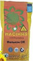 Семена подсолнечника НС ФАЛКОН, Сербия