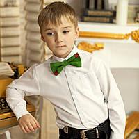 Вишитий метелик-краватка для чоловіків або хлопчиків (ручна робота) , фото 1