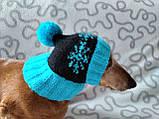 Шапка для собаки,шапка для таксы,одежда для домашних животных, фото 4