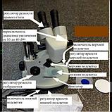 ТХ-14 Трихинелоскоп, фото 2