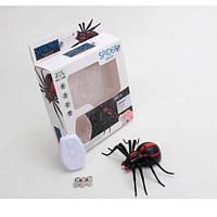 Радиоуправляемый черный паук 1388 на пульте управления   игрушка на радиоуправлении! Акция