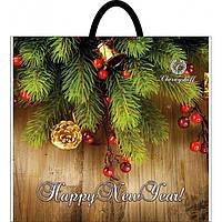 Пакет с петлевой ручкой 40х43 Диор Новый год