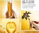 Уценка! Омолаживающая сыворотка Images Ginseng с корнем женьшеня 100 ml (мятая коробка), фото 2